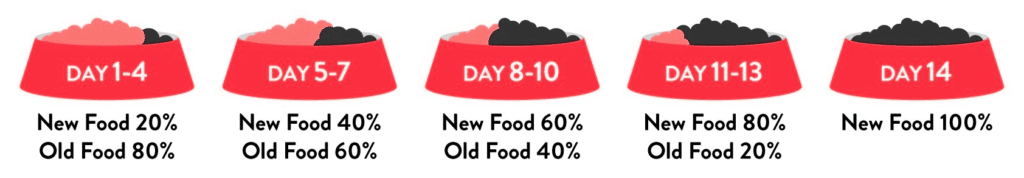 A chart that details how the ratio between old and new food can be changed over two weeks