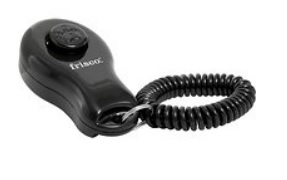 A black clicker used for training cats and dogs